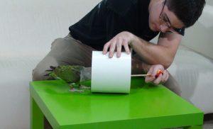 Huấn luyện vẹt két nhìn theo mục tiêu và chui qua ống
